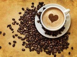cafe&coktail 512