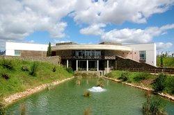 Centro Ciencia Viva Da Floresta