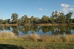 Goondiwindi Botanic Gardens of the Western Woodlands