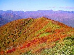 """""""Tairappyou Mountain""""in Autumn"""