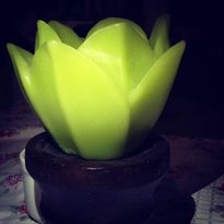 Candlelight Cafe