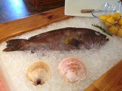 Daniels' Whalebone Seafood Market