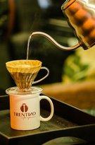 Trentino Cafes Especiais