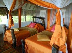 Kikoti Safari Camp