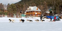 ‪Baikal Dog Sledding Centre‬