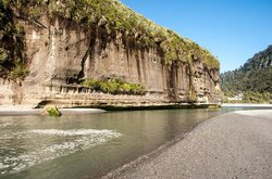 Punakaiki Beachfront Motels