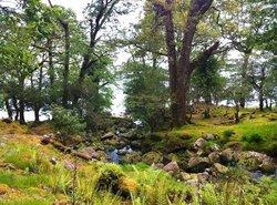 O'Sullivan's Cascade