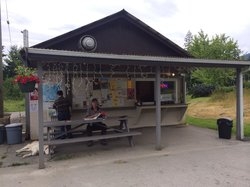 The Snack Shack At Saltery Bay