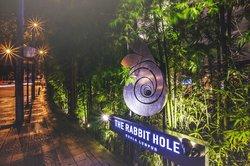 The Rabbit Hole