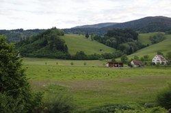 Landgasthof zum Roessle