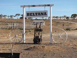 Beltana Station