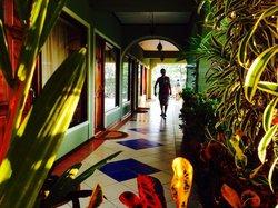 Tamarindo Hostel Resort