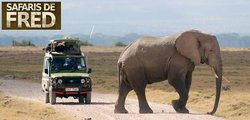 Fredlink Aventure Safaris Day Tours
