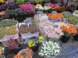 Dapper Markt