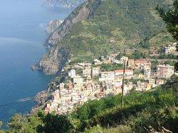 Tuscan Sunshine Tours