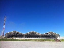 Arena Miraflores