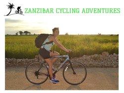Tours en bicicleta