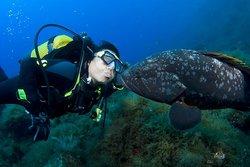 ZOEA Scuba Diving Center