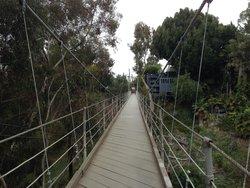 Spruce Street Footbridge