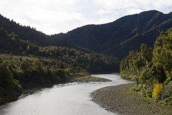 Waioeka Gorge Scenic Reserve