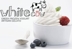 White Cow - Greek Frozen Yogurt, Artisan Gelato