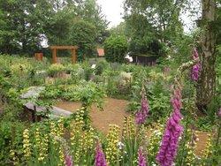 RSPB Flatford Wildlife Garden