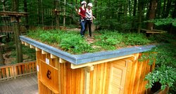 Der Waldboden auf unserem Materialbaumhaus