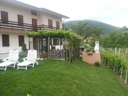SelfCatering rooms and outside area, vines