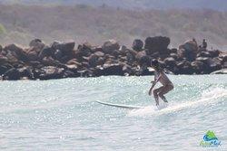 Wildmex Surf & Adventure