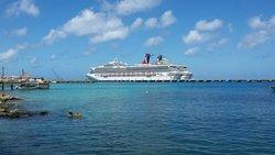 Vista Magnifica de Cruceros