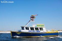 Dolphin Fun Dolphin Cruises