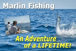 Rebel Sportfishing
