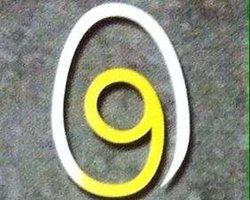 Aux 9 coqs
