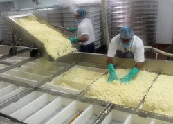 Roth Kase Cheese Factory