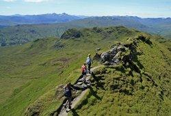 Highland Tiger Mountain Tours - Day Tours