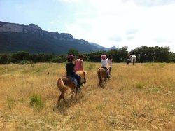 La Ferme Equestre de Rouffiac des Corbières