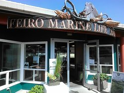 Arthur D. Feiro Marine Life Center