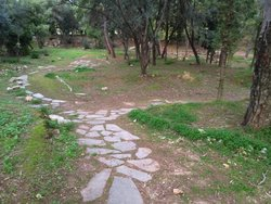 Plato's Academy Park
