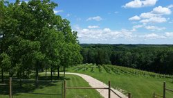 Garvin Heights Vineyards