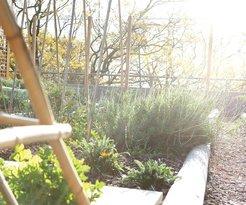 Our extensive rooftop garden is a hidden treasure