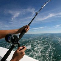 Reel Commocean Fishing Charters