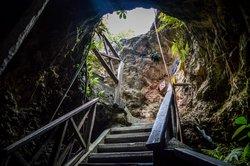 Cenotes Tamcach-Ha & Choo-Ha