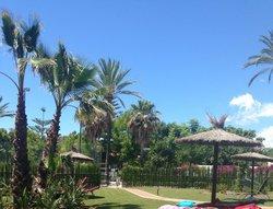 Sun bathing at main pool