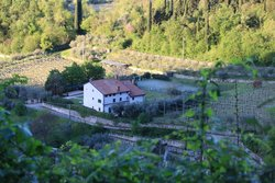 Bed and Breakfast Antica Valpolicella