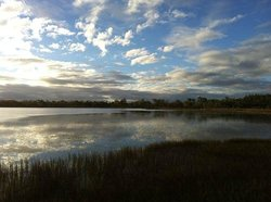 Mareeba Tropical Savannah and Wetland Reserve