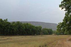 Bandhavgarh Hill