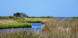 Hatteras Island Ocean Center
