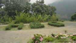 Himalayan Botanical Garden