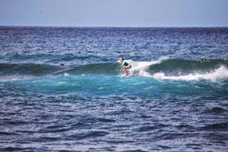Duke's Surf School & Eco Adventures