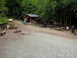 Lesni Bar